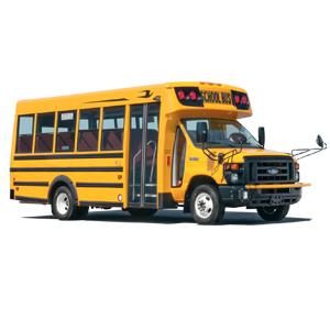 bluebird-microbus