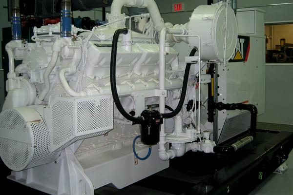 White Cat Generator