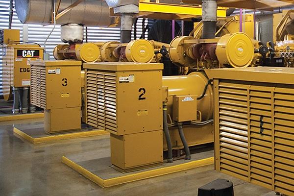 Cat Generators in Healthcare Facility